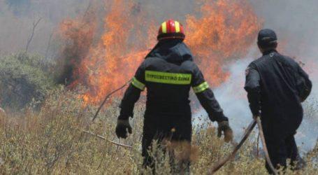 Φωτιά σε χωράφια στον Αλμυρό