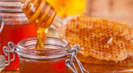 Χρηματοδότηση 2,7 εκ. ευρώ για τους μελισσοκόμους