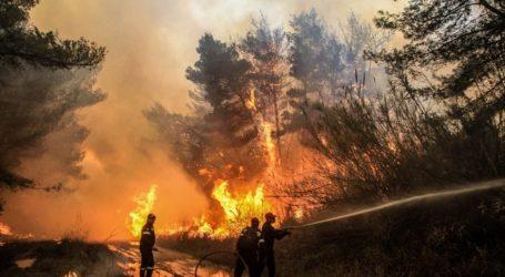 Αλόννησος: Φωτιά σε δασική περιοχή