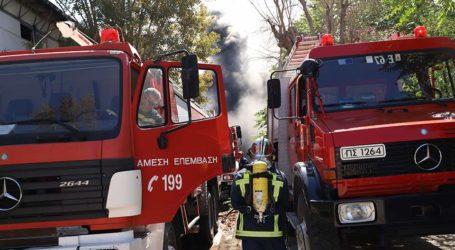 ΤΩΡΑ: Φωτιά σε θερμοκήπιο στην Αγριά Βόλου