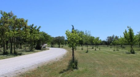 Τον λόφο του Μεζούρλου προτείνει ο Δήμος στους Λαρισαίους για τις βόλτες τους ώστε να αποσυμφορηθούν πάρκα και πλατείες!