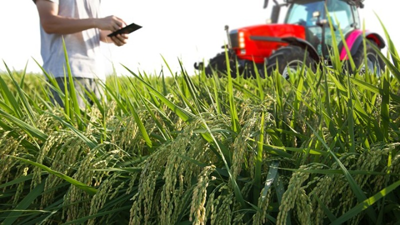 Γεωπόνος Αξιοποίησης Φυσικών Πόρων και Γεωργικής Μηχανικής