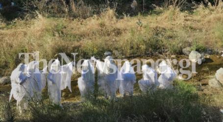 Βόλος: Εικαστικό δρώμενο στον Κραυσίδωνα με τους «φύλακες άγγελους της φύσης» [εικόνες]