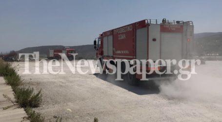 Βόλος: Έγιναν στάχτη 10 στρέμματα – Σε επιφυλακή πυροσβεστικές δυνάμεις μετά τη φωτιά στον «Κούκο» [εικόνες]