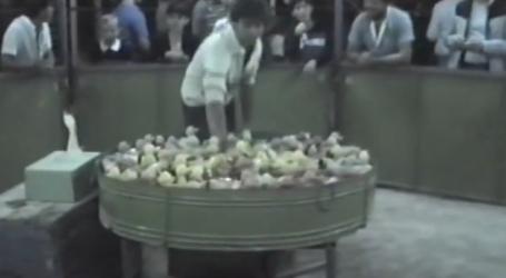 Δείτε βίντεο: Πως ήταν το παζάρι της Λάρισας στο μακρινό και …ελεύθερο από κορωνοϊό 1985