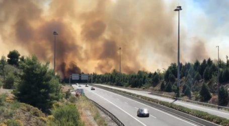 Ταλαιπωρία Βολιωτών στην εθνική οδό – Μπέρδεμα λόγω της φωτιάς στη Φθιώτιδα