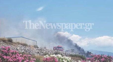 ΤΩΡΑ: Σε εξέλιξη δύο μεγάλες φωτιές στον Βόλο – Δείτε εικόνες και βίντεο