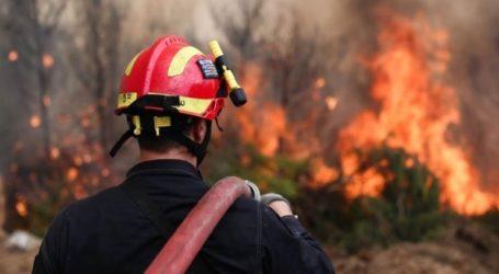 Μεγάλη πυρκαγιά ανάμεσα στα χωριά Έξω Χώρα και Μαριές