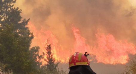 Σε ύφεση η φωτιά στο Αμάρι Κρήτης