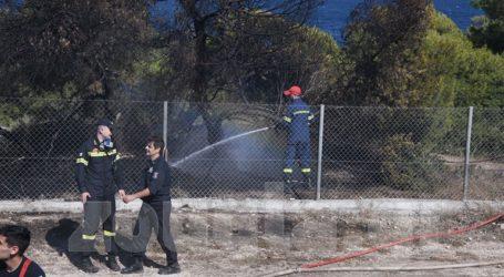Φωτιά στον περιφραγμένο χώρο τουΠΙΚΠΑΒούλας