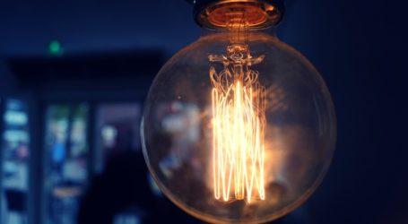 Ερευνητές δηλώνουν ότι παρήγαγαν ηλεκτρισμό από φυτά