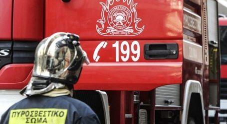 Ζάκυνθος: Μεγάλη πυρκαγιά στη θέση Ασκός στις Βολίμες