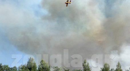 Περιορίστηκε η φωτιά στο Μαρτίνο