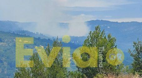 Κεραυνός προκάλεσε πυρκαγιά στο Κυπαρίσσι Ευβοίας