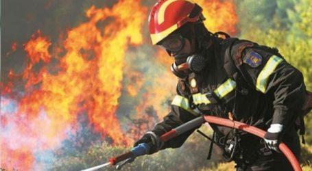 Φωτιά στο Πόρτο Γερμενό Αττικής