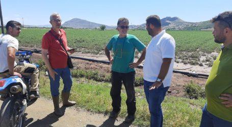Άμεσες εκτιμήσεις και δίκαιες αποζημιώσεις ζητά ο Δήμος Φαρσάλων για τους χαλαζόπληκτους