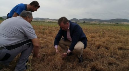 Αυτοψία Κόκκαλη σε χαλαζόπληκτες καλλιέργειες στην περιοχή των Φαρσάλων