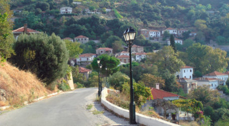 Ξεκινούν οι εργασίες αποκατάστασης του οδικού δικτύου στις Αφέτες
