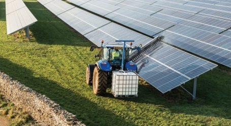 Μαγνησία: Αδυναμία κατασκευής αγροτικών φωτοβολταϊκών λόγω κατάληψης των δικτύων του ΔΕΔΔΗΕ