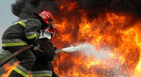 Φωτιά σε αγροτική έκταση στον Ριζόμυλο