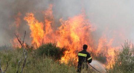Τώρα: Επιχείρηση κατάσβεσης φωτιάς κοντά στο Βελεστίνο