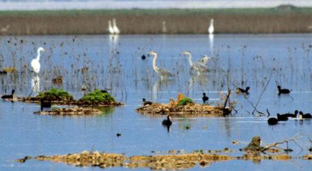 Πεζοπορία στη λίμνη Κάρλα από τον ΚΕΠ Υγείας του Δήμου Ρ. Φεραίου