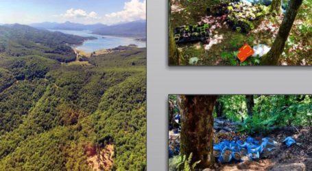 Δύο φυτείες με περισσότερα από 1.200 χασισόδεντρα εντοπίστηκαν στη λίμνη Πλαστήρα – Αναζητούνται οι δράστες (φωτο)