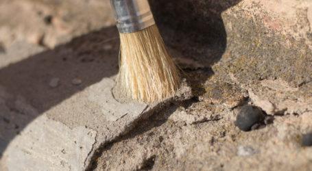 Εθελοντική δράση για την ανάδειξη του αρχαιολογικού χώρου της Άργισσας
