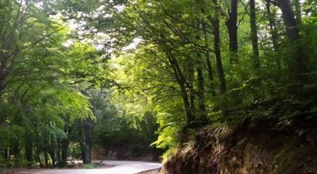 Πήλιο: Κλειστός ο δρόμος στον Κισσό