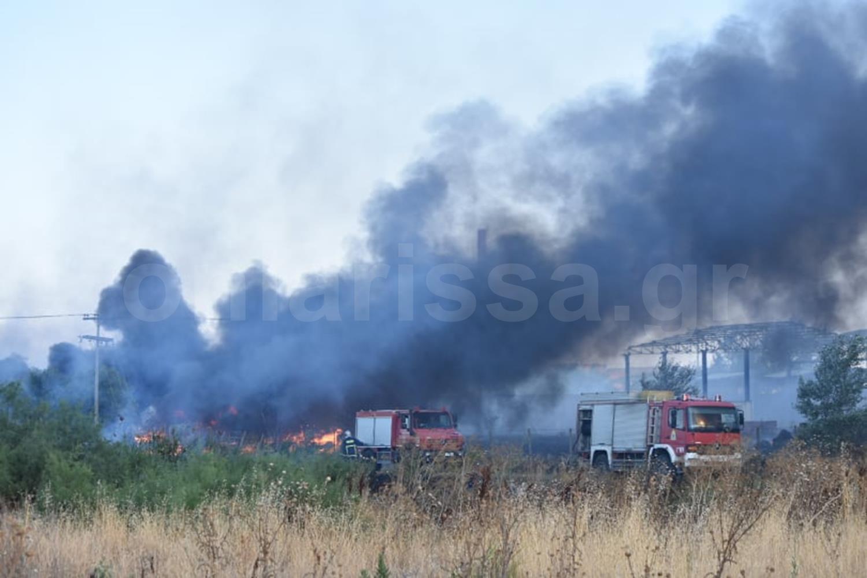 Δείτε φωτογραφίες και βίντεο: Φωτιά έξω από τη Λάρισα στο ύψος της Βιοκεράλ