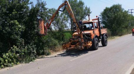 Σε διαρκή εγρήγορση η υπηρεσία Πρασίνου του Δήμου Φαρσάλων και το καλοκαίρι