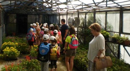 Λάρισα: Οι μικροί κατασκηνωτέςγίνονται υπεύθυνοι κηπουροί