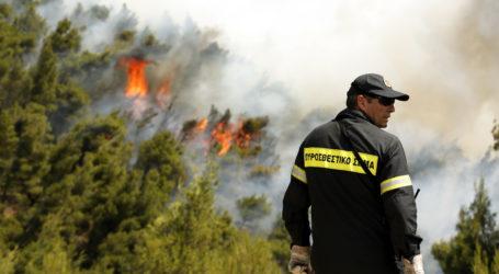 Δύο πυρκαγιές σε λίγες ώρες στη Σούρπη
