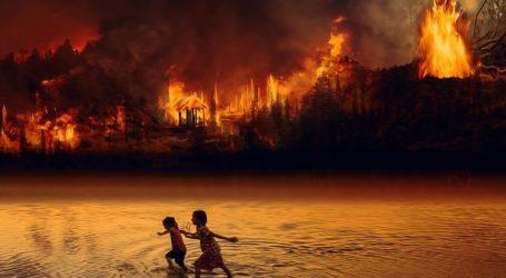 Κατά 20% αυξήθηκαν οι πυρκαγιές στο τροπικό δάσος του Αμαζονίου το 2019