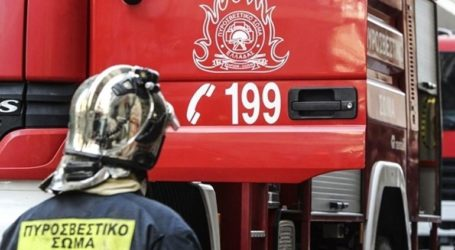 Υπό έλεγχο η πυρκαγιά σε δασική έκταση στον Τρύφο Αιτωλοακαρνανίας