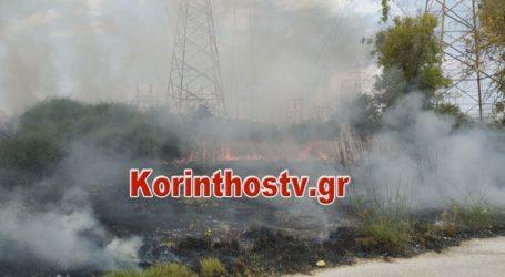 Πυρκαγιά στην Κόρινθο – Διάσπαρτες εστίες εντόπισαν οι πυροσβέστες