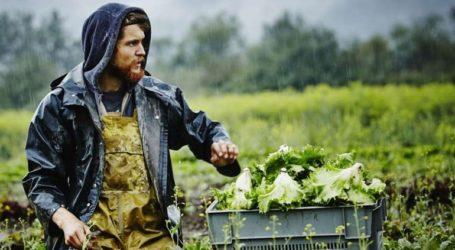 Ανησυχίες των Ευρωπαίων παραγωγών για τους βρετανικούς δασμούς στα οπωροκηπευτικά μετά το Brexit