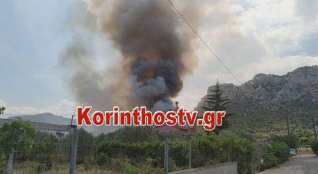 Πυρκαγιά στις Κεχριές Κορινθίας – Εκκενώνονται τρεις οικισμοί