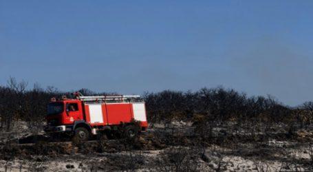Ανοίγουν και πάλι οι δικογραφίες για τις πυρκαγιές σε Μάνη και Κύθηρα το 2017