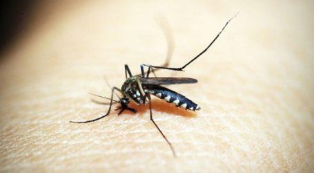 Τρία κρούσματα του ιού του δυτικού Νείλου στην Καβάλα