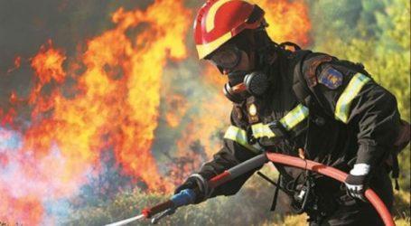 Πυρκαγιά σε δασική έκταση στην περιοχή Γραμματικό Λαντζοϊού