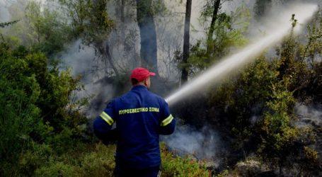 Παραμένει πολύ υψηλός ο κίνδυνος πυρκαγιάς το Σάββατο σε δύο περιφέρειες