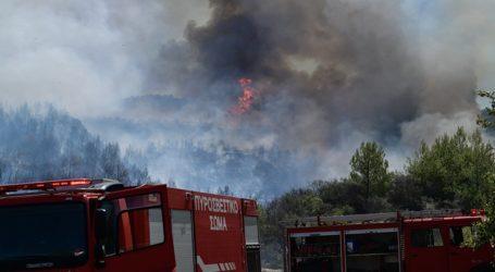 64 πυρκαγιές μέσα σε 24 ώρες