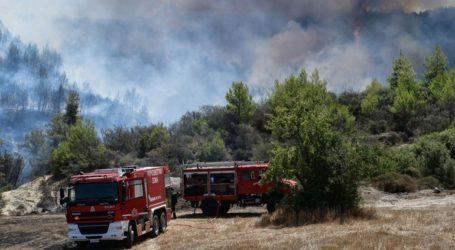 Εξήντα δύο πυρκαγιές εκδηλώθηκαν το τελευταίο 24ωρο