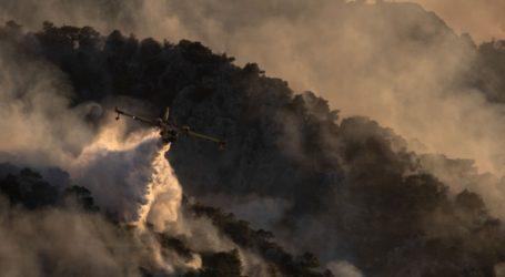 Εκατοντάδες πυροσβέστες δίνουν μάχη για την κατάσβεση μεγάλης πυρκαγιάς στα κεντρικά της Πορτογαλίας