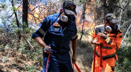 Φωτιά στην Κεφαλονιά – Εκκενώνεται προληπτικά οικισμός