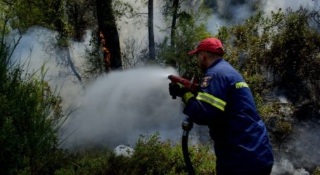 Σε 54 ανήλθαν οι πυρκαγιές που εκδηλώθηκαν το τελευταίο 24ωρο