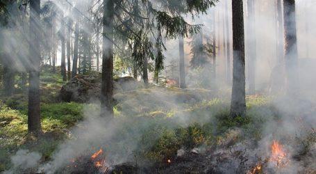 Η πυρκαγιά τέθηκε υπό έλεγχο, αλλά οι πυροσβέστες παραμένουν σε επιφυλακή