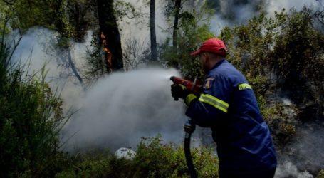 Σε εξέλιξη πυρκαγιά σε δασική έκταση στο δήμο Αγίου Νικολάου
