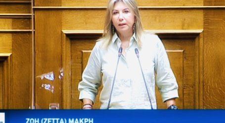Ζέττα Μακρή: «Εάν δεν υπάρξει εθνική σύγκλιση, ο ψηφιακός μετασχηματισμός του κράτους θα είναι μία ακόμη «χαμένη ευκαιρία»
